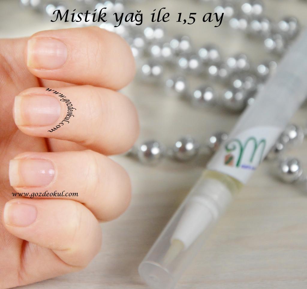 mistik yag 1,5 ay